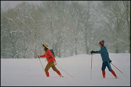 Композиция, правило третей - лыжники в движении