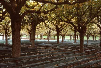Композиция скамеек в парке