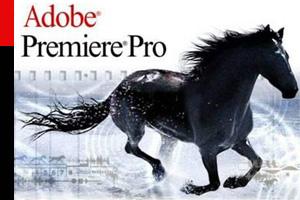 Заметки мастера. Видеоуроки по Adobe Premiere / Урок 11: Простые эффекты