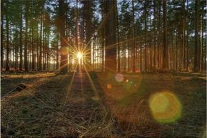 Все об освещении при видеосъемках / Часть 7: искусственный свет, недостаток освещения