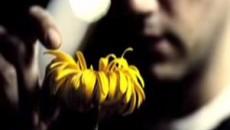 Любит/Не любит / She Loves Me She Loves Me Not (2003) [Видео]