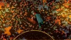 Strawberry Swing / Coldplay (2009) Клип [Видео]