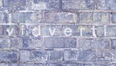 Украинский проект Vidverti