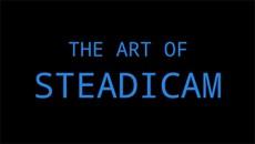Искусство Стедикама / Art of Steadicam (2013)