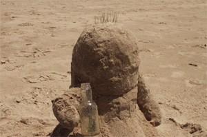 Бутылка / Bottle (2009)